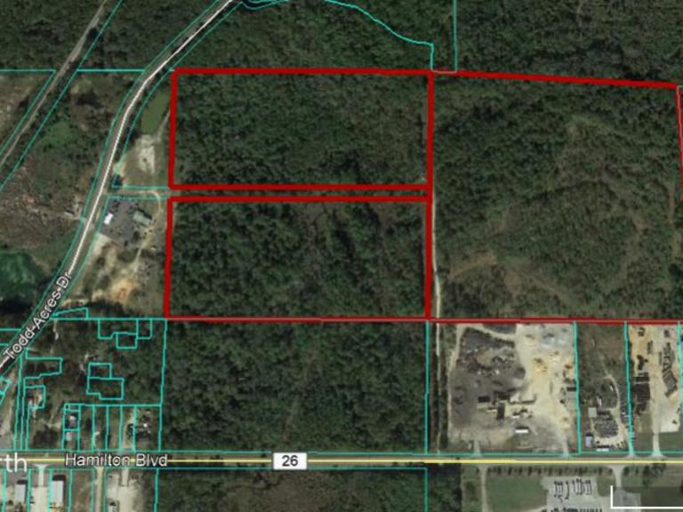 81 AC Vacant Land: Theodore, AL