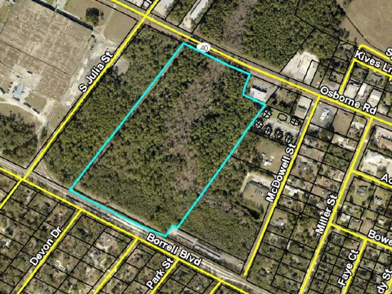 30.16 AC Commercial Land: St. Mary's, GA