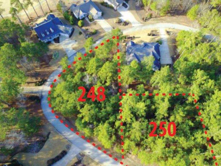 Residential Lot in Savannah Lakes at Lake McCormick (250 Amelia Drive)